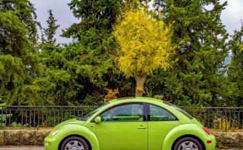 masini Volkswagen